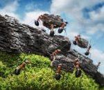 Laboratorio di team building: costruire e condurre la propria squadra