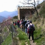 Outdoor training: rischi e opportunità per utilizzarlo con successo
