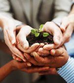 Talent Management: come far crescere le competenze e riconoscere il merito