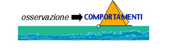 Fig. 1 / I comportamenti sono la punta dell'iceberg
